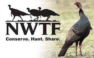 Wild Turkey Federation